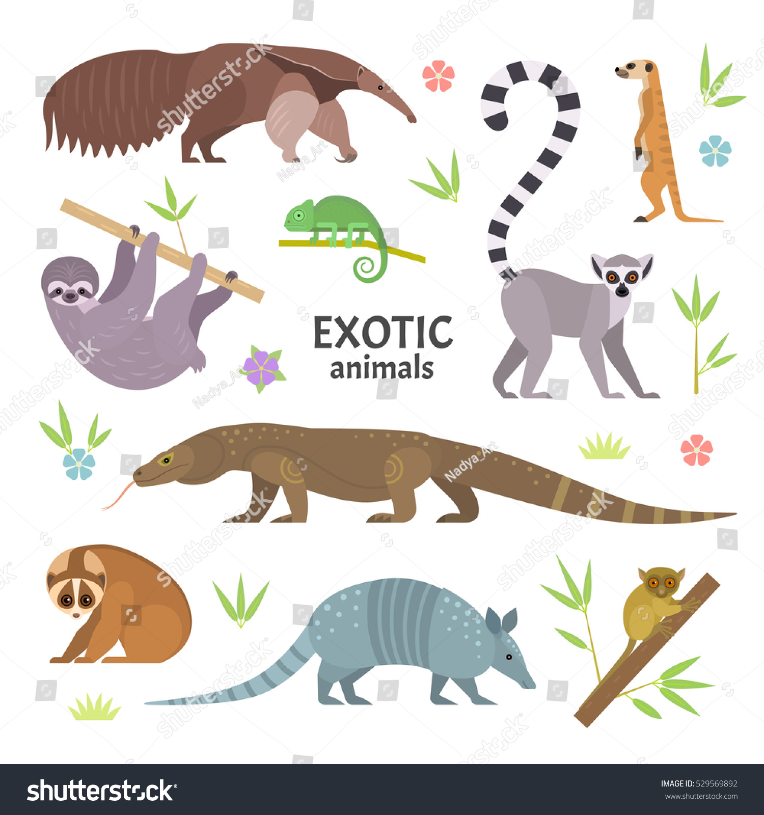 Stock Vector Exotic Animals Vector Illustration With Flat Animals Including Anteater Ring Tailed Lemur Lemur on Lemur Food Web Diagram