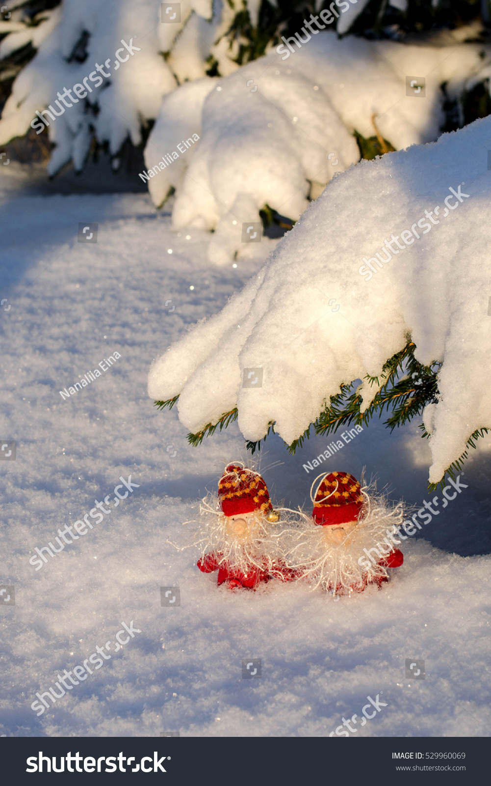Two Small Decorative Gnome Pine Branches Stock Photo Edit Now 529960069