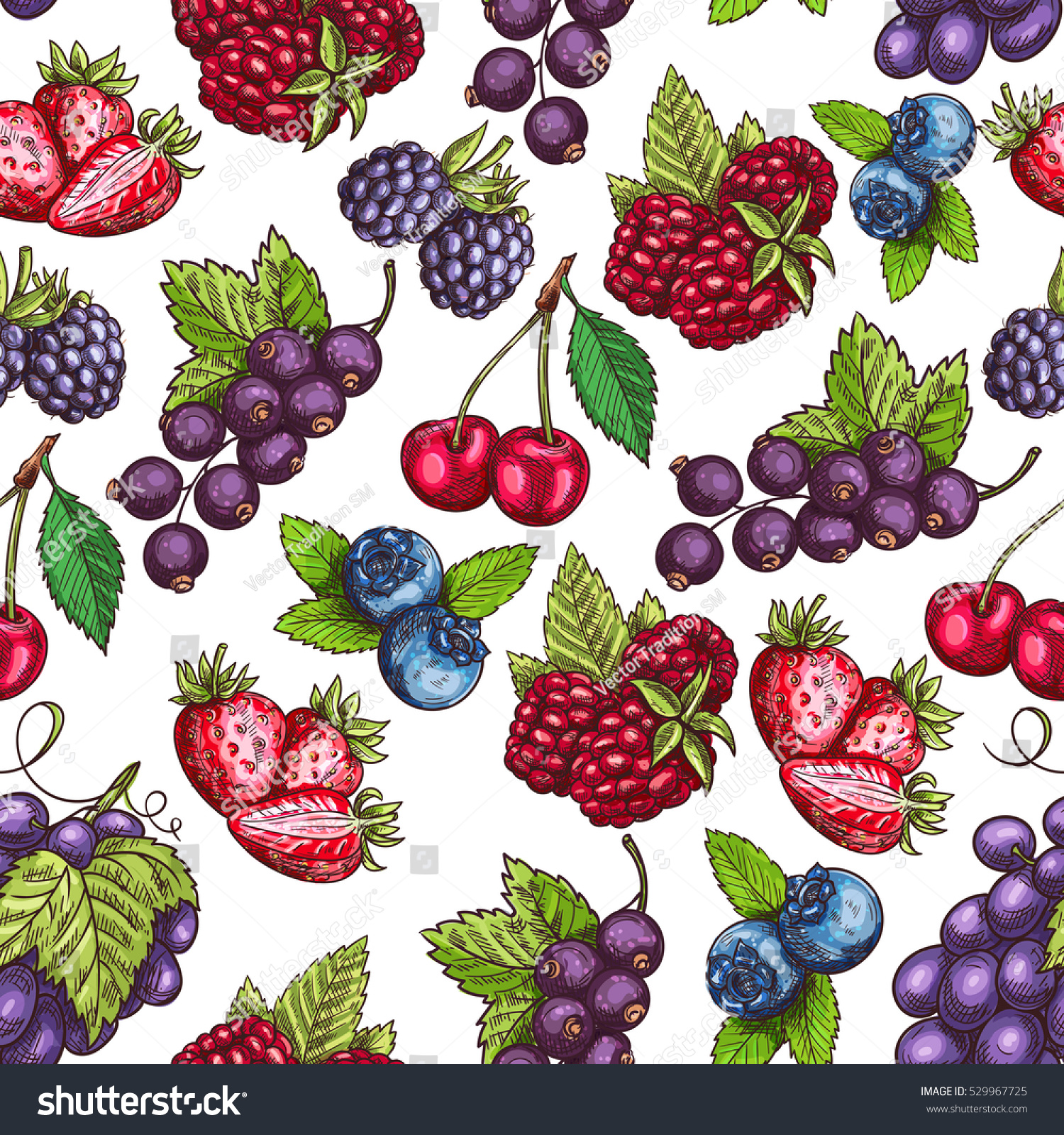 Berries Pattern Vector Seamless Background Sketch Stock ...