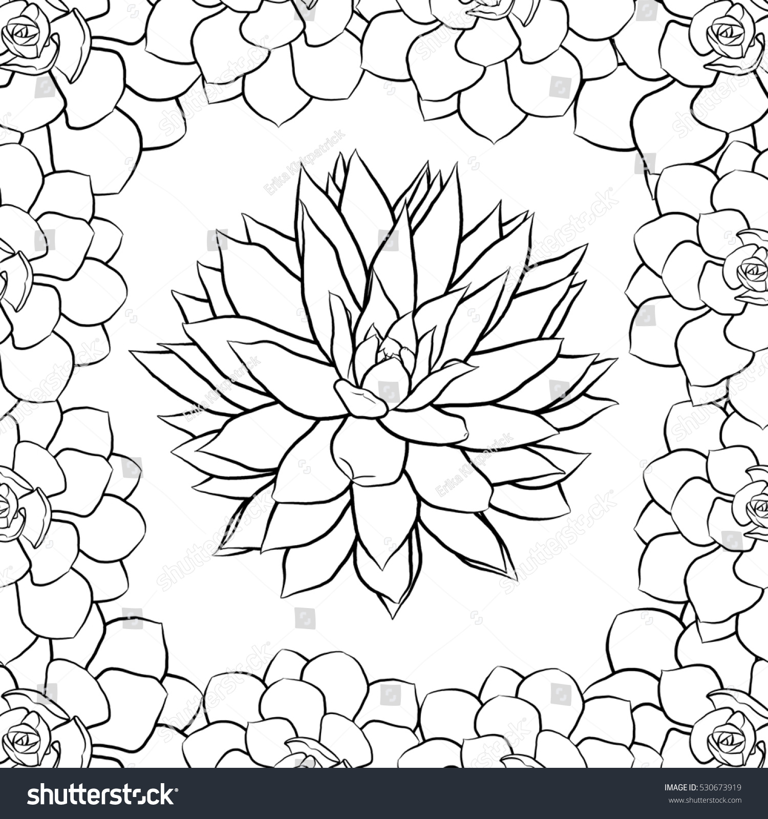 Succulent Coloring Page Stock Illustration 530673919 Shutterstock