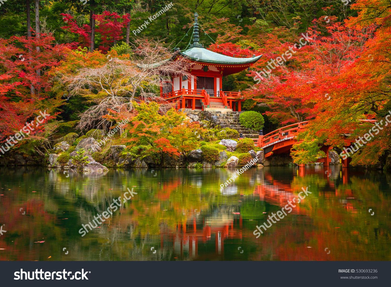 Beautiful Autumn Japanese Garden Colorful Maple Stock Photo (Edit ...