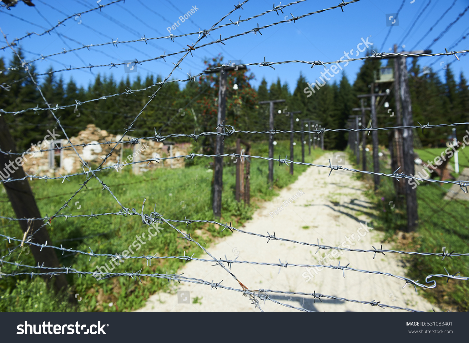 Barbed Wire Remains Iron Curtain On Stock Photo & Image (Royalty ...