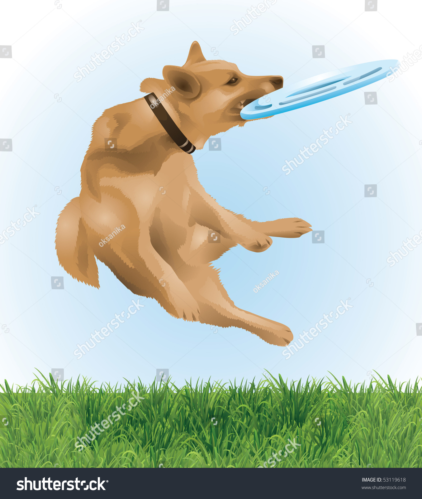 Dog Catching A Frisbee In The Air