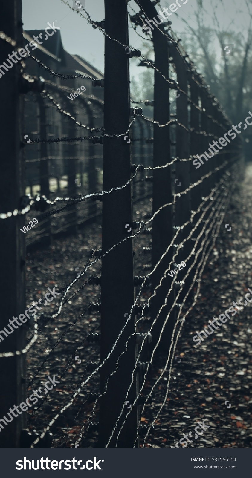 barbed wire fence concentration camp. Barbed Wire Fence Of A Concentration Camp