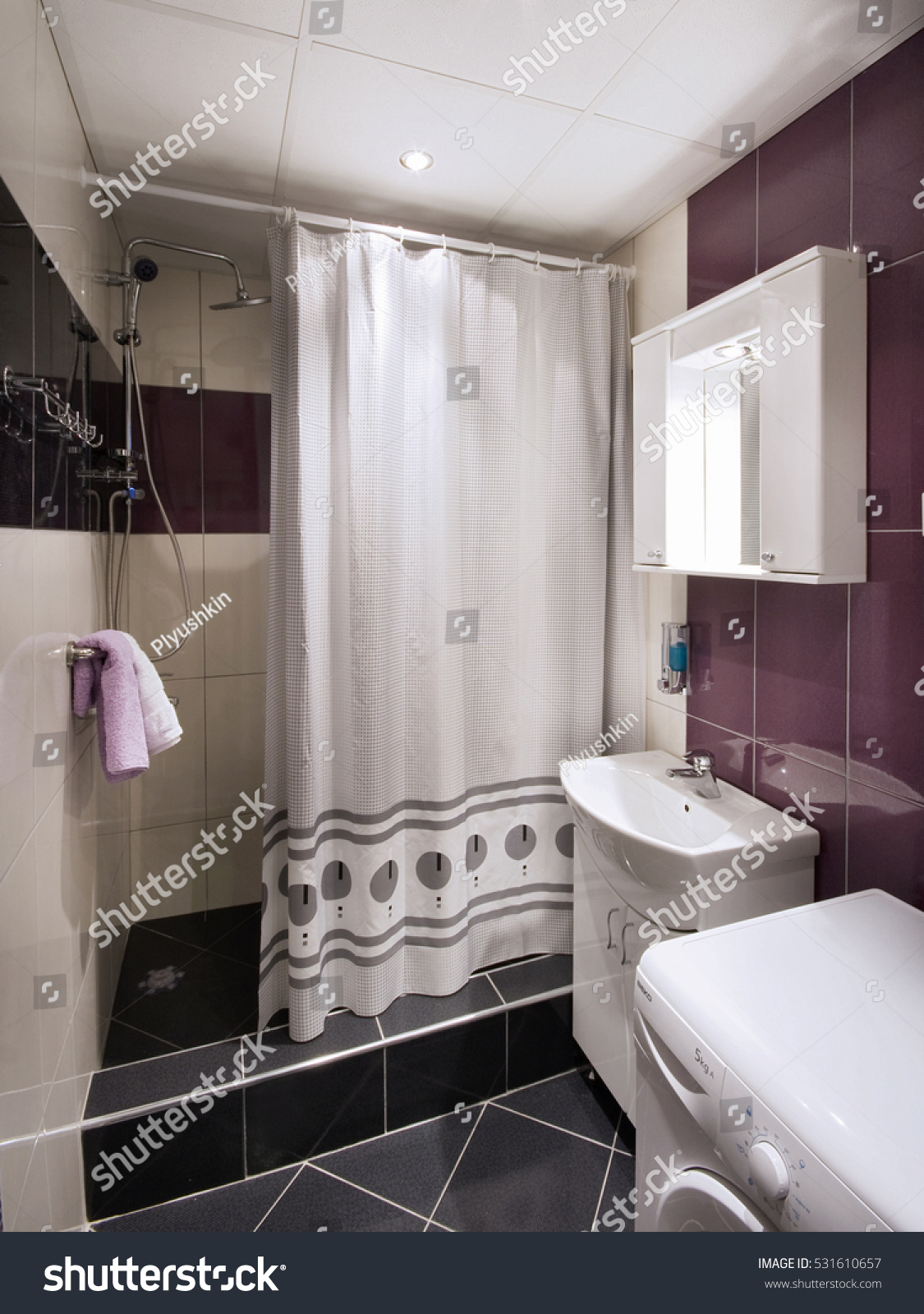 Regular Toilet In An Apartment Or Hotel Room