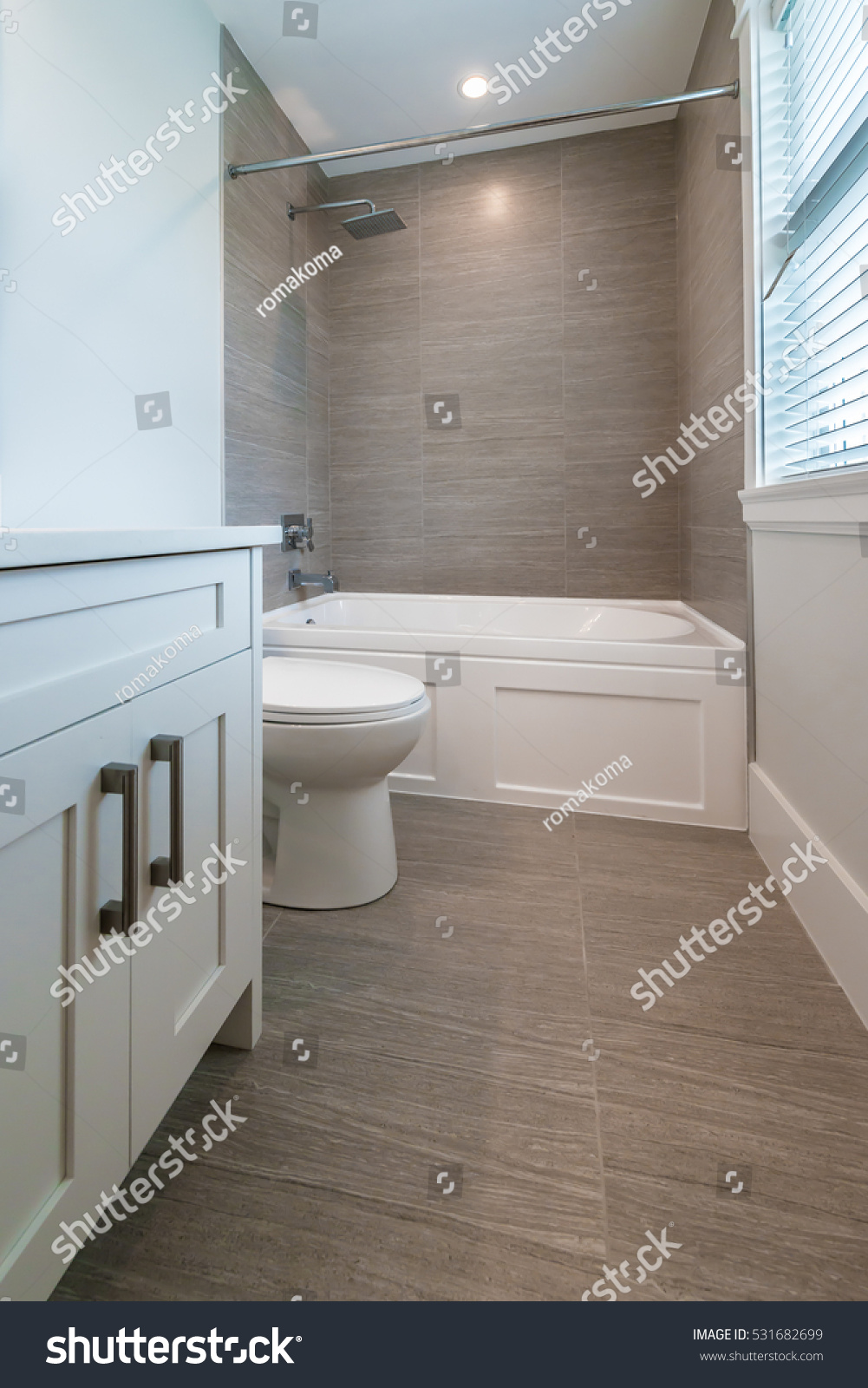 Nicely decorated modern washroom, bathroom, with the toilet sit ...