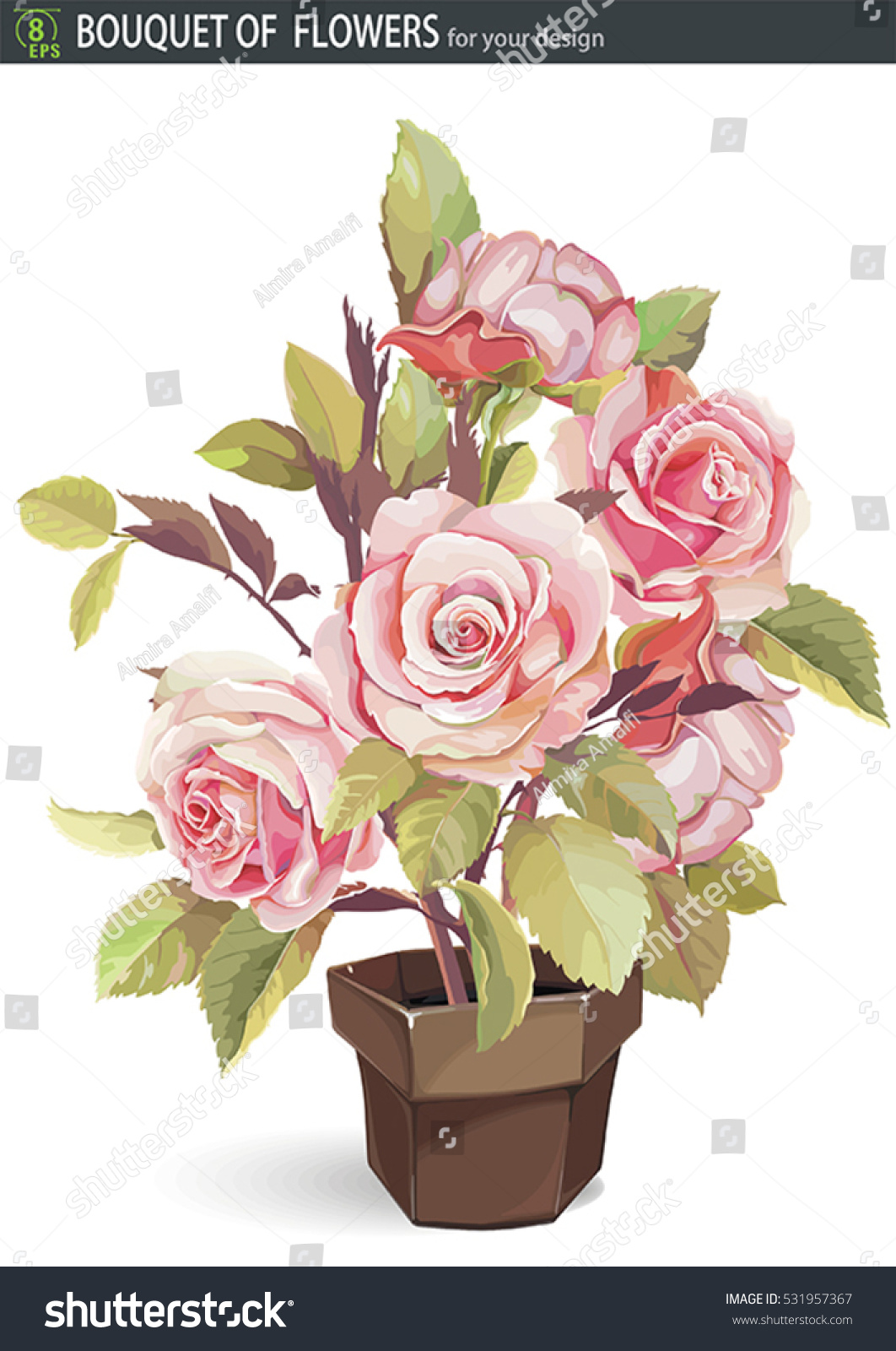 Drawings Romantic Floral Bouquets Retro Flowers Stock Vector
