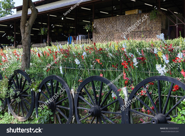 Wagon Wheel Fence Enclosed Flowers Garden Stock Photo Edit Now 532639357
