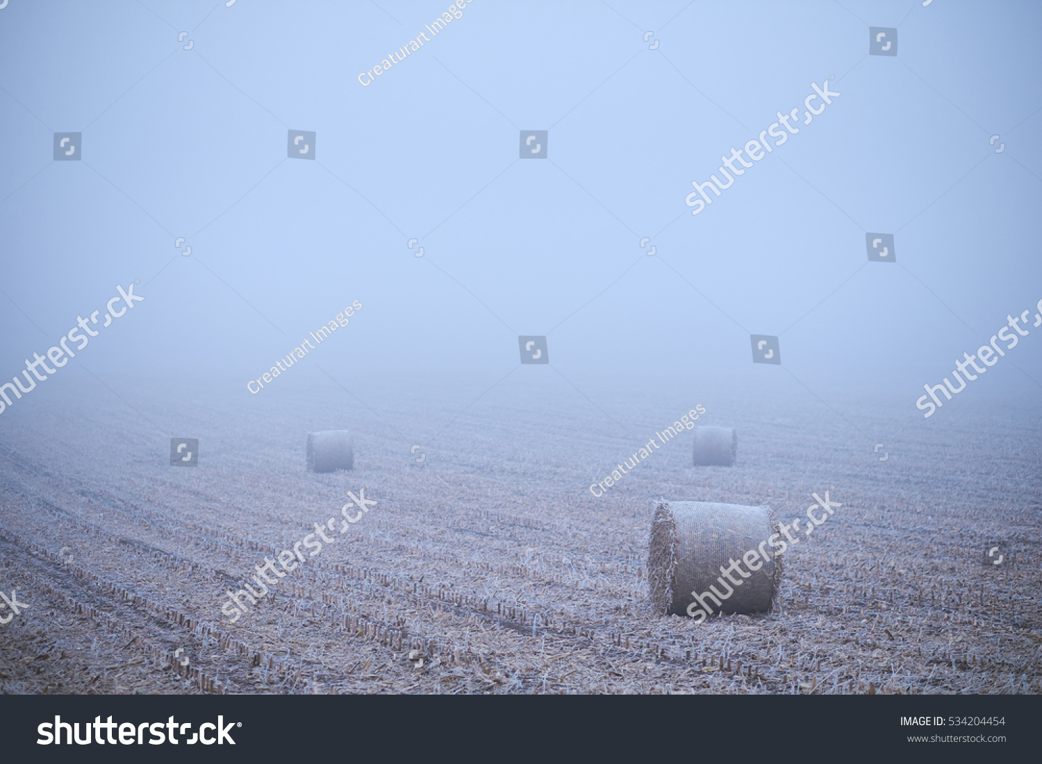 Straw bales on winter field #534204454