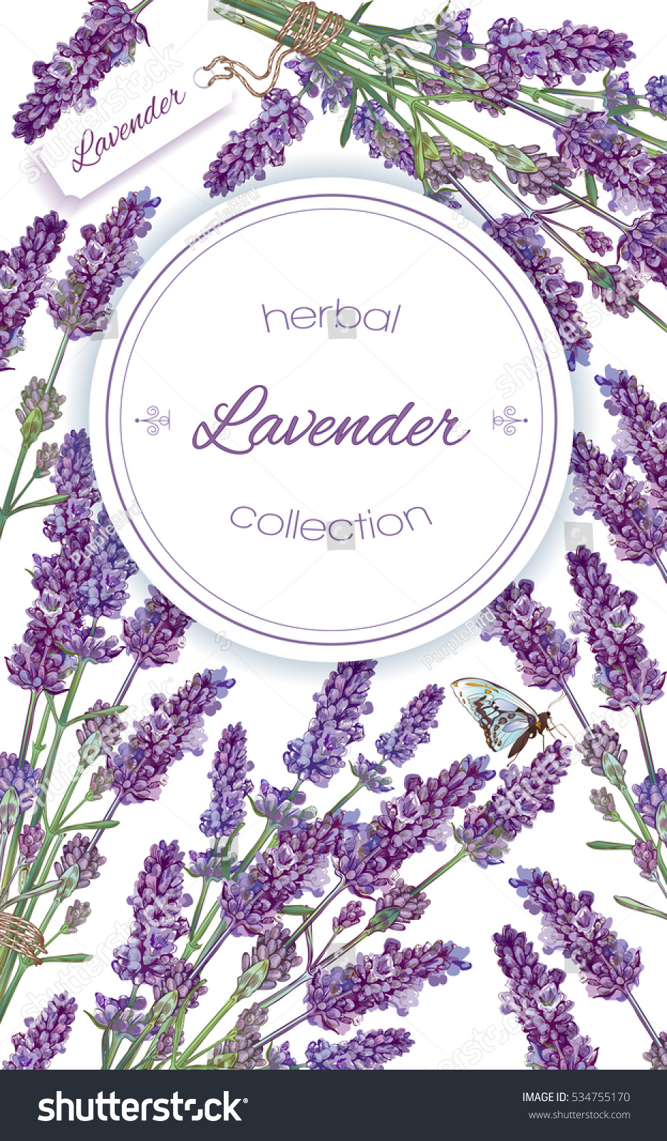 Vector lavender flower frame on white background Design for natural cosmetic health care products perfume Can be used as greeting card or wedding invitation