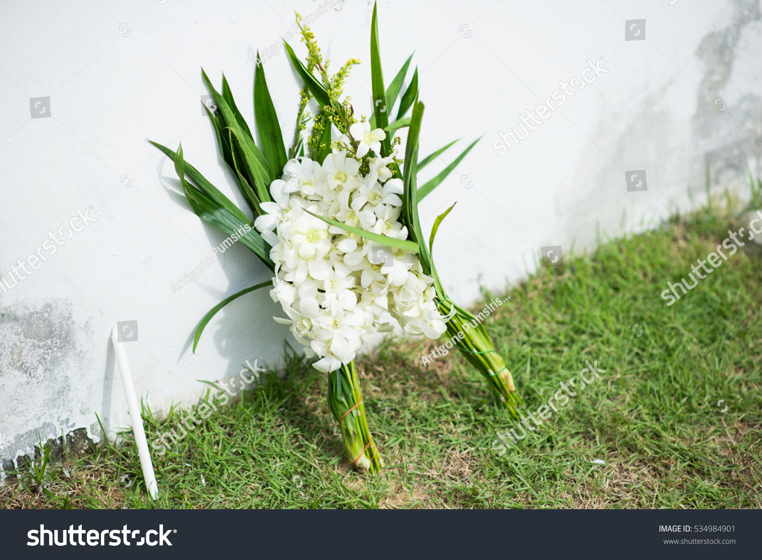 White Flower Put Between Wall Ground Stock Photo Royalty Free