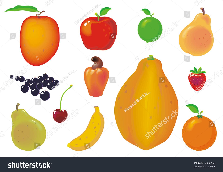Twelve Types Fruits Isolated On White Stock Illustration 53600503 ...