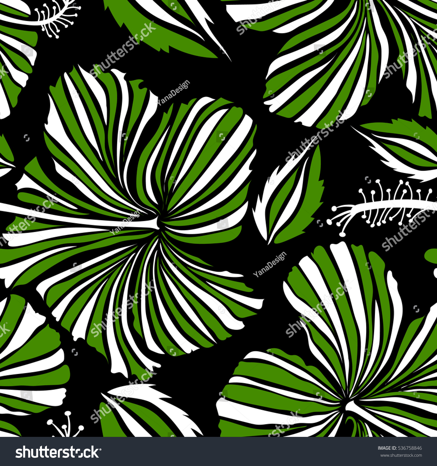 hawaiian tropical natural floral green white stock vector
