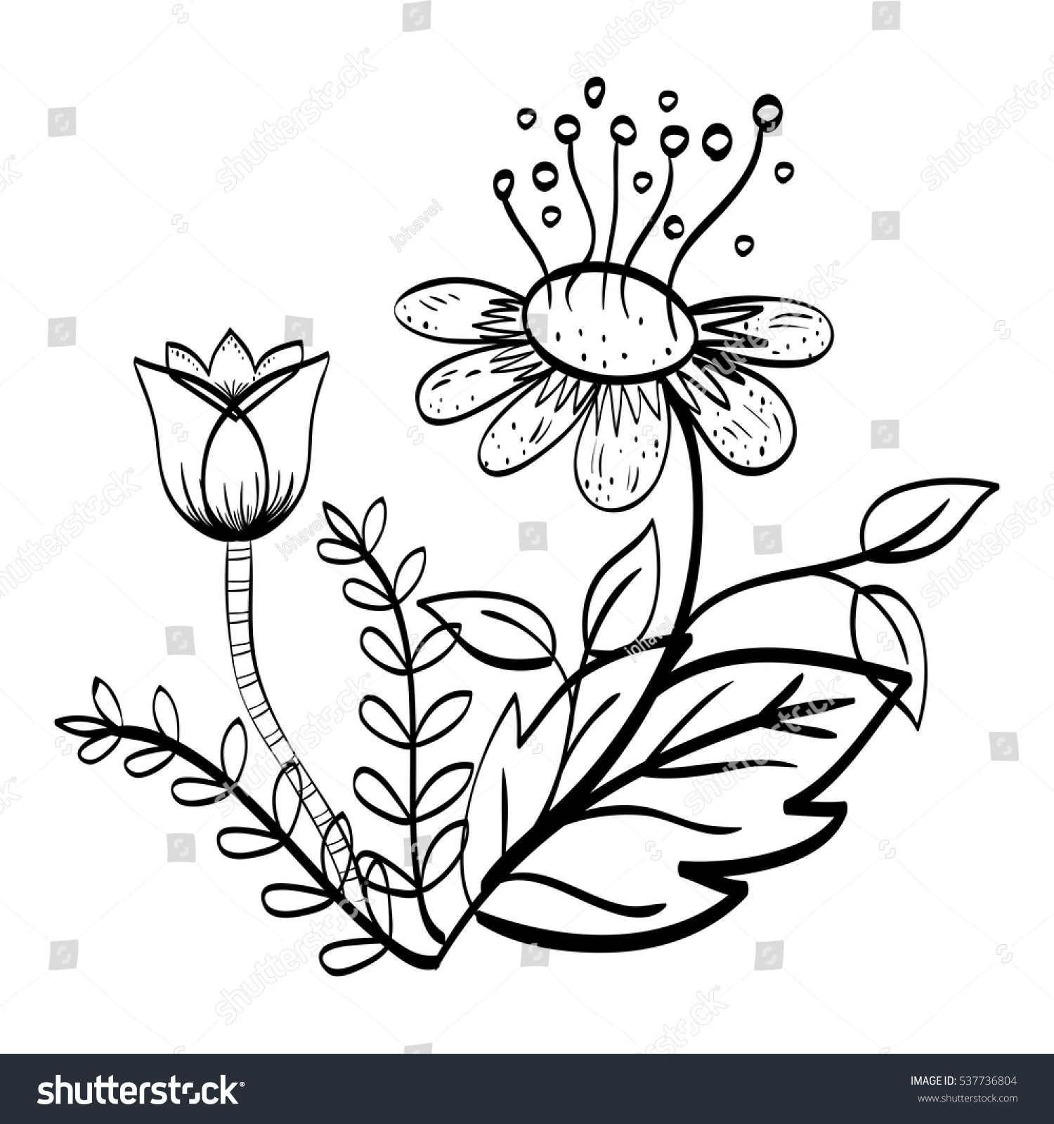 Beautiful Flower Black White Icon Vector Stock Vector Royalty Free