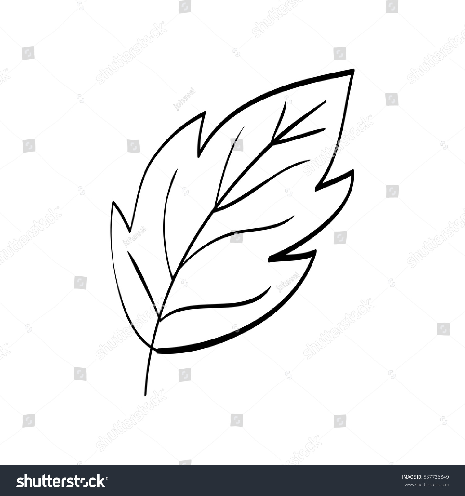 Beautiful Leaf Black White Icon Vector Stock Vector ...