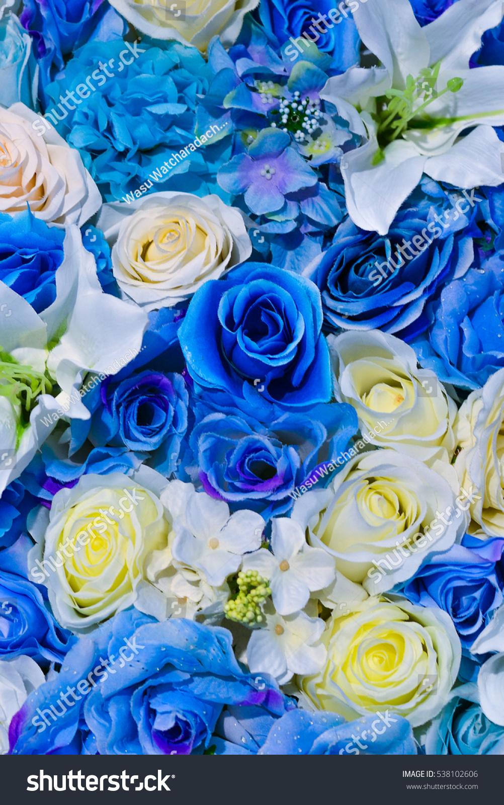 Beautiful Flowers Wall Background Blue White Stock Photo Edit Now
