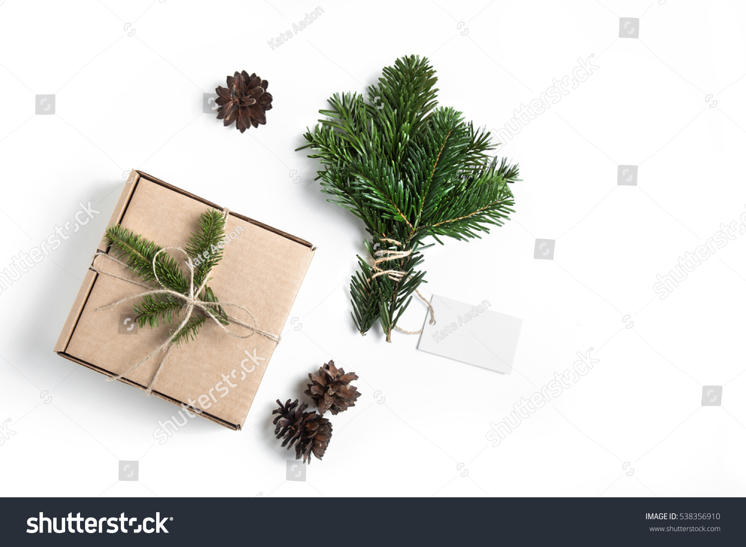 Christmas Present Empty Tag Decor Firtree Stock Photo (Edit Now ...