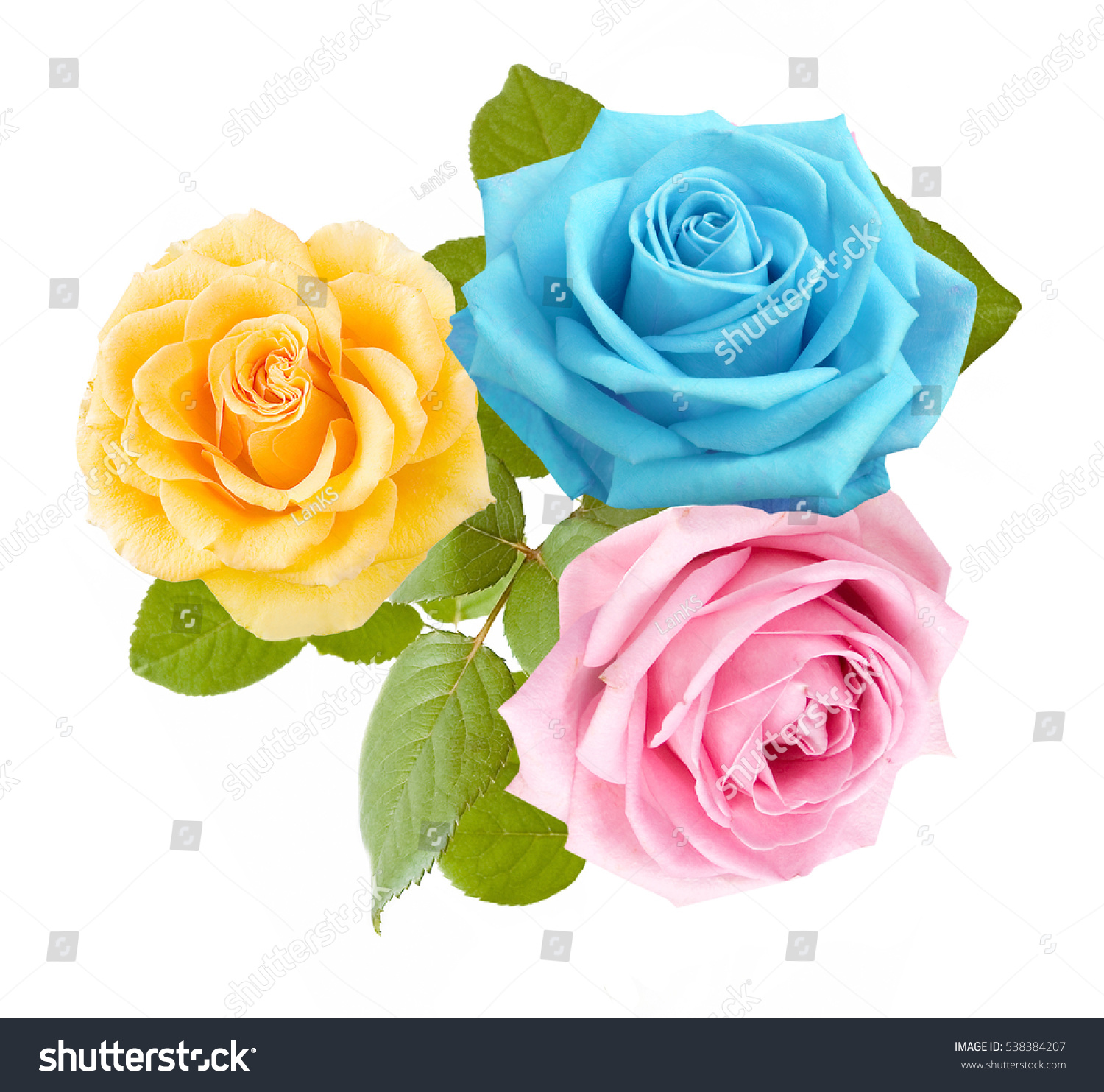 Beautiful yellow blue pink rose flowers stock photo edit now beautiful yellow blue and pink rose flowers bunch isolated on white background mightylinksfo
