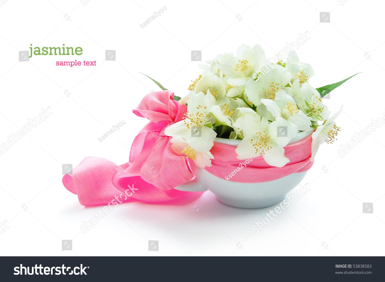 Bunch Jasmine Flowers Stock Photo Royalty Free 53838583 Shutterstock