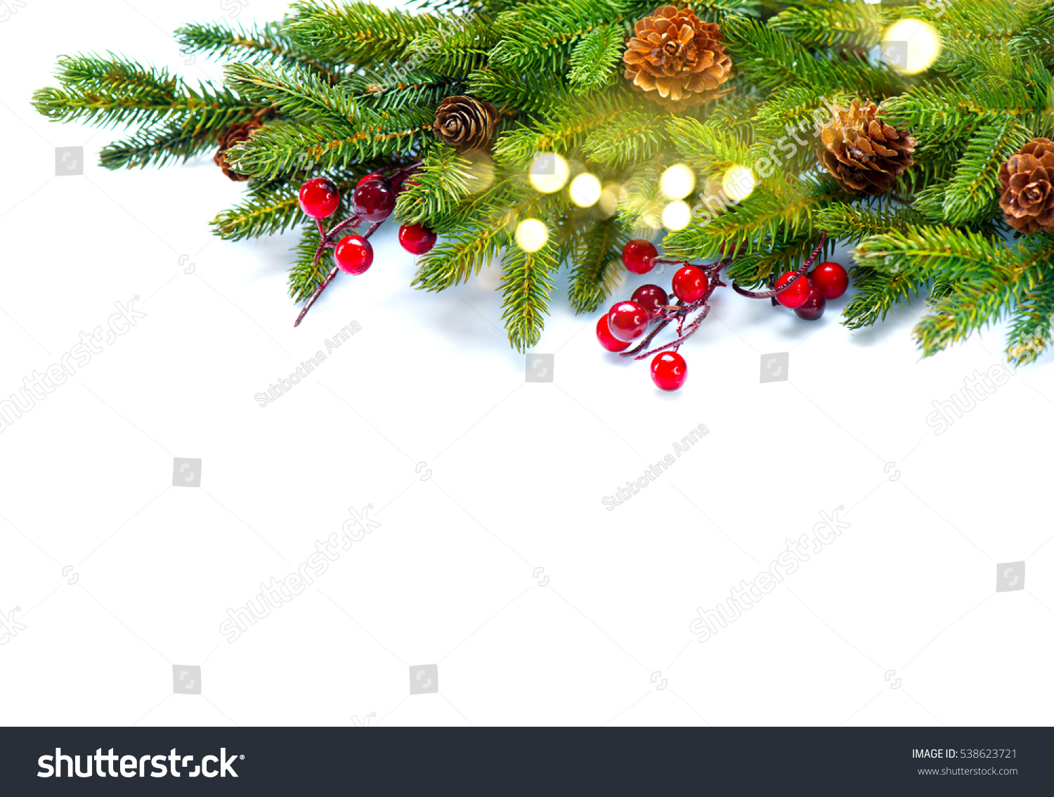 Christmas Tree Cones Border Isolated On Stock Photo ...