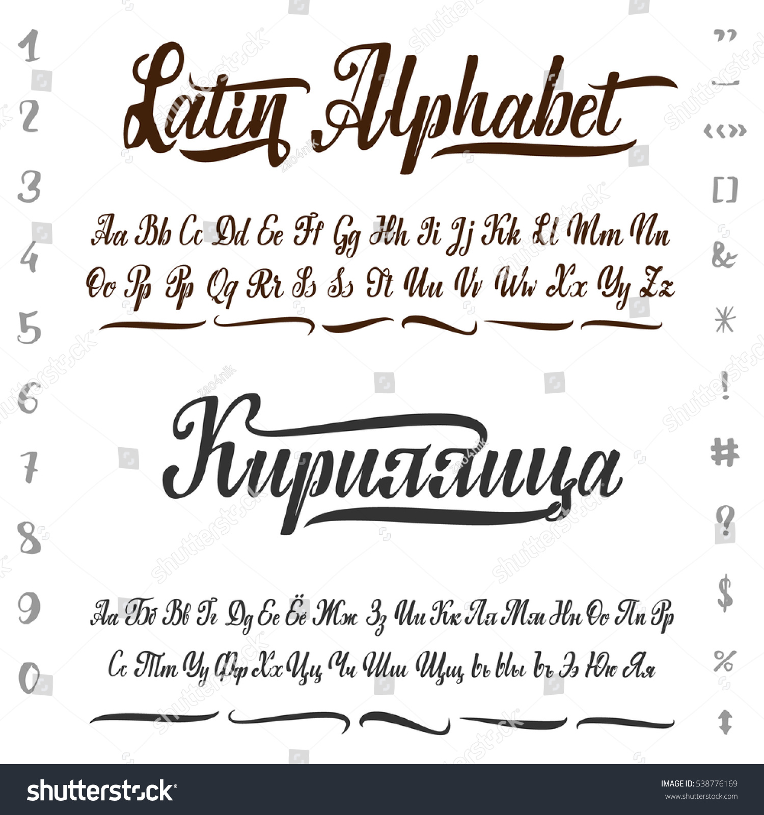 Vector alphabet cyrillic latin calligraphic font stock