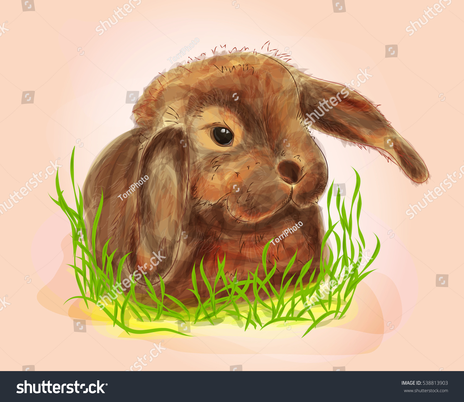 https://www.shutterstock.com/image-illustration/digital-illustration-cute-bunny-grass-watercolor-538813903