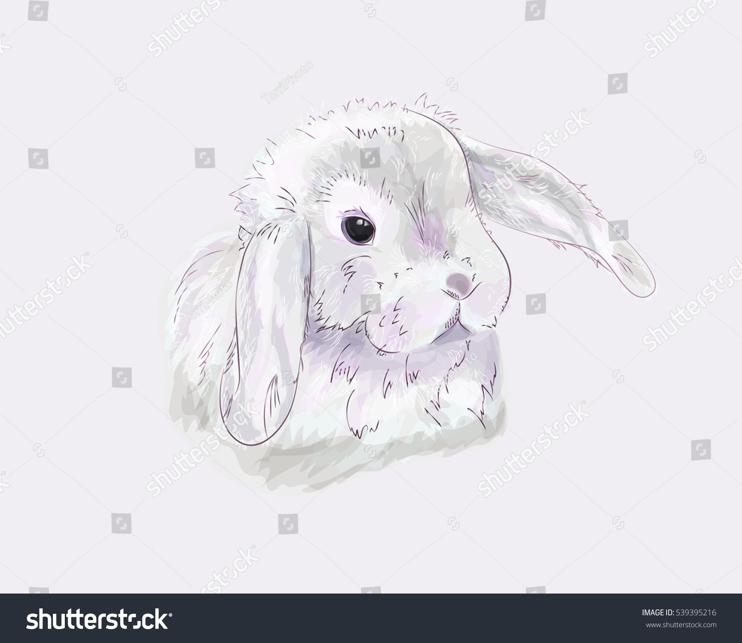 https://www.shutterstock.com/image-illustration/hand-drawn-cute-easter-bunny-pastel-539395216