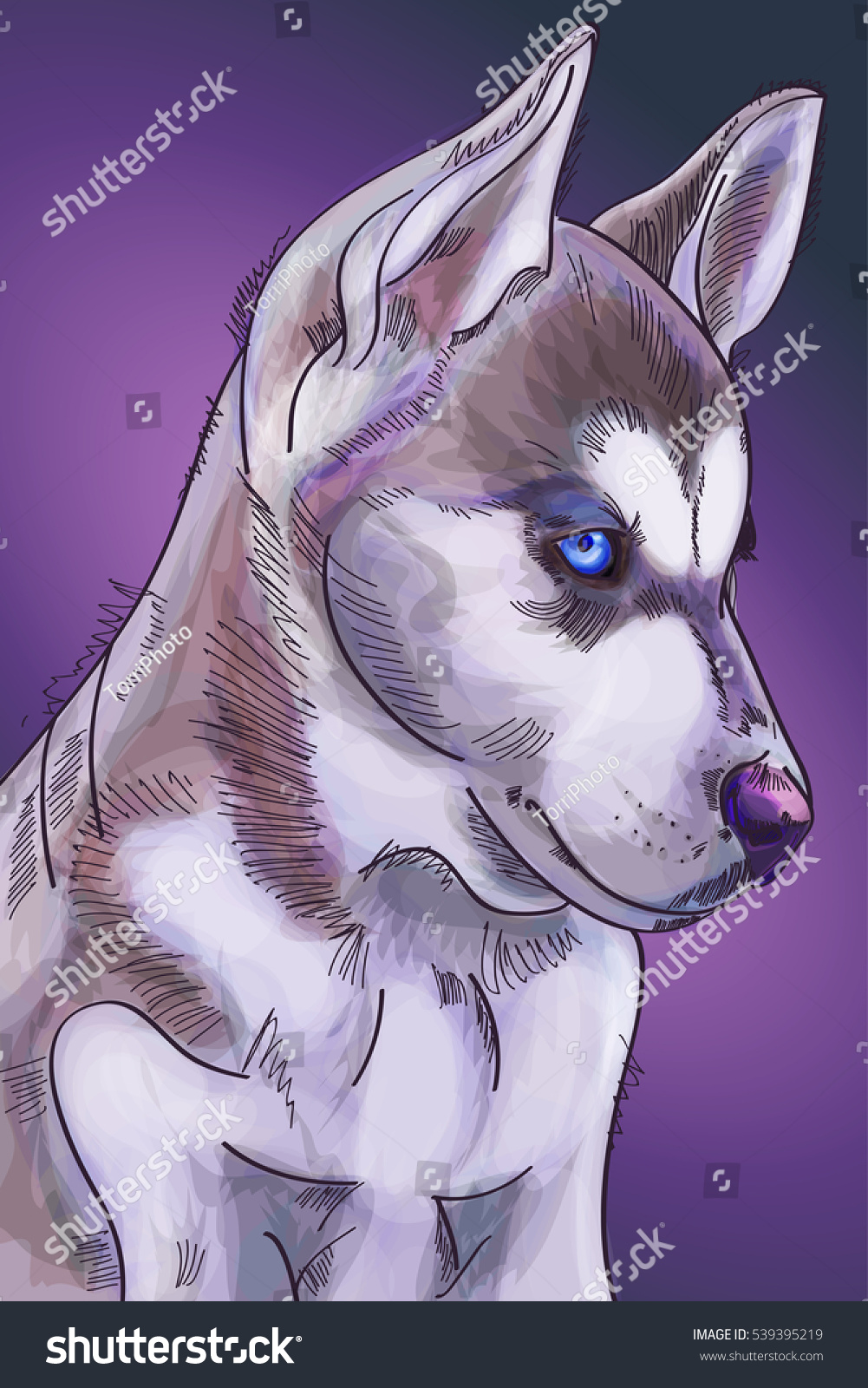 https://www.shutterstock.com/image-illustration/hand-drawn-watercolor-cute-siberian-huskies-539395219