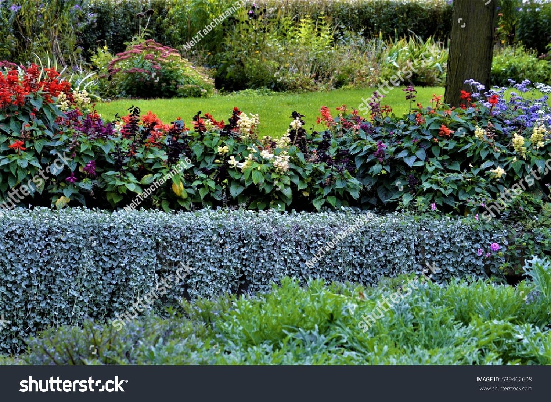 Beautiful Flowers Trees Grass Invigorates Anyone Stock Photo