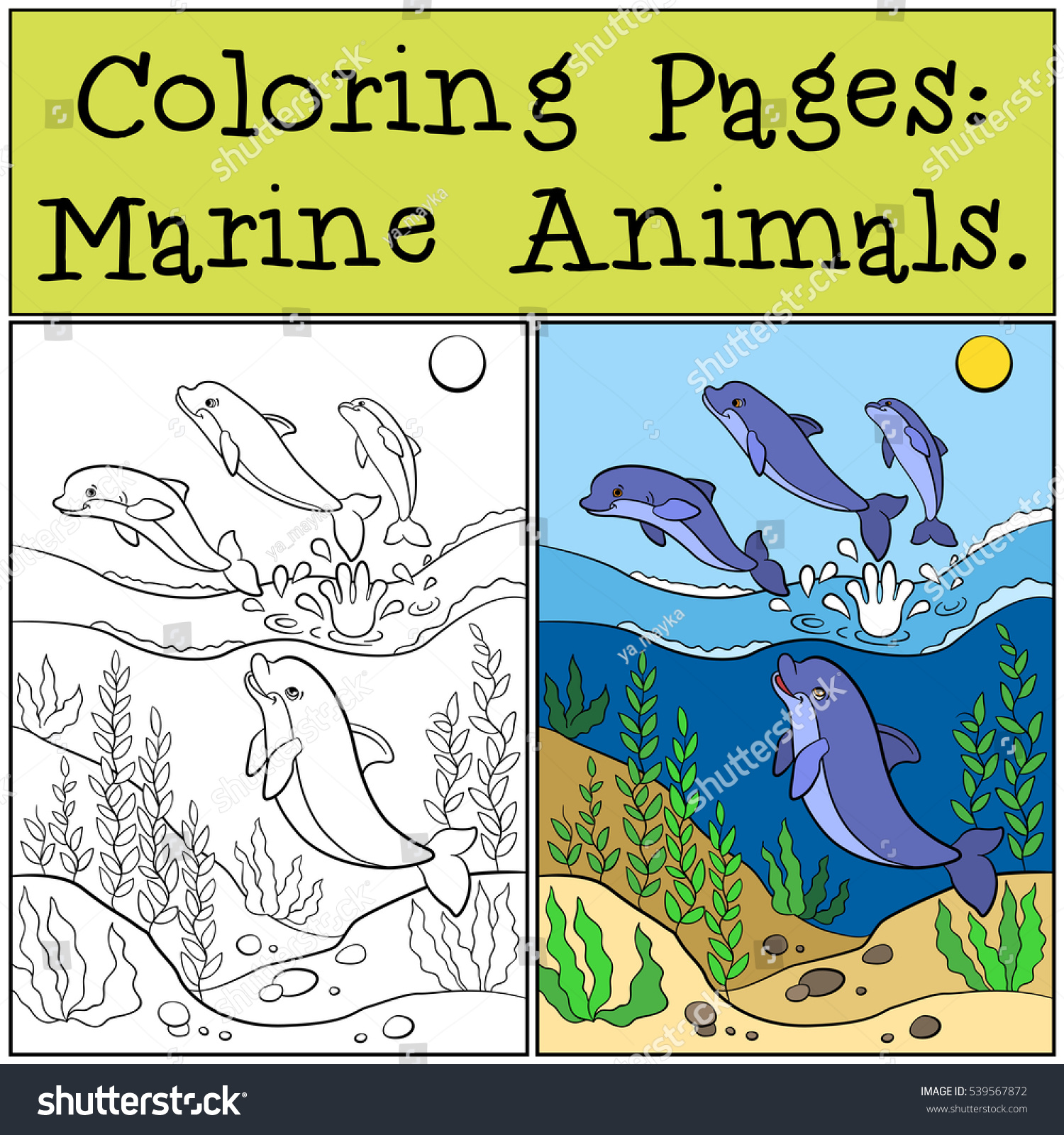 coloring pages marine animals group cute stock vector 539567872