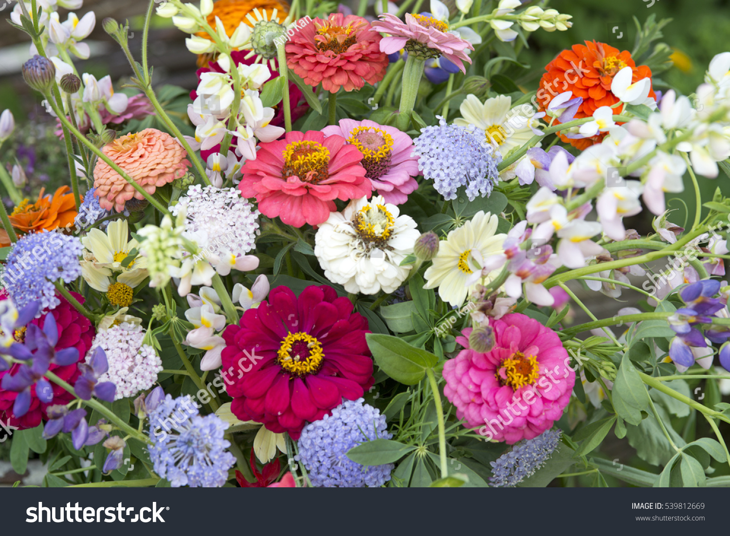 Flower bouquet vase garden setting stock photo royalty free flower bouquet vase garden setting stock photo royalty free 539812669 shutterstock izmirmasajfo