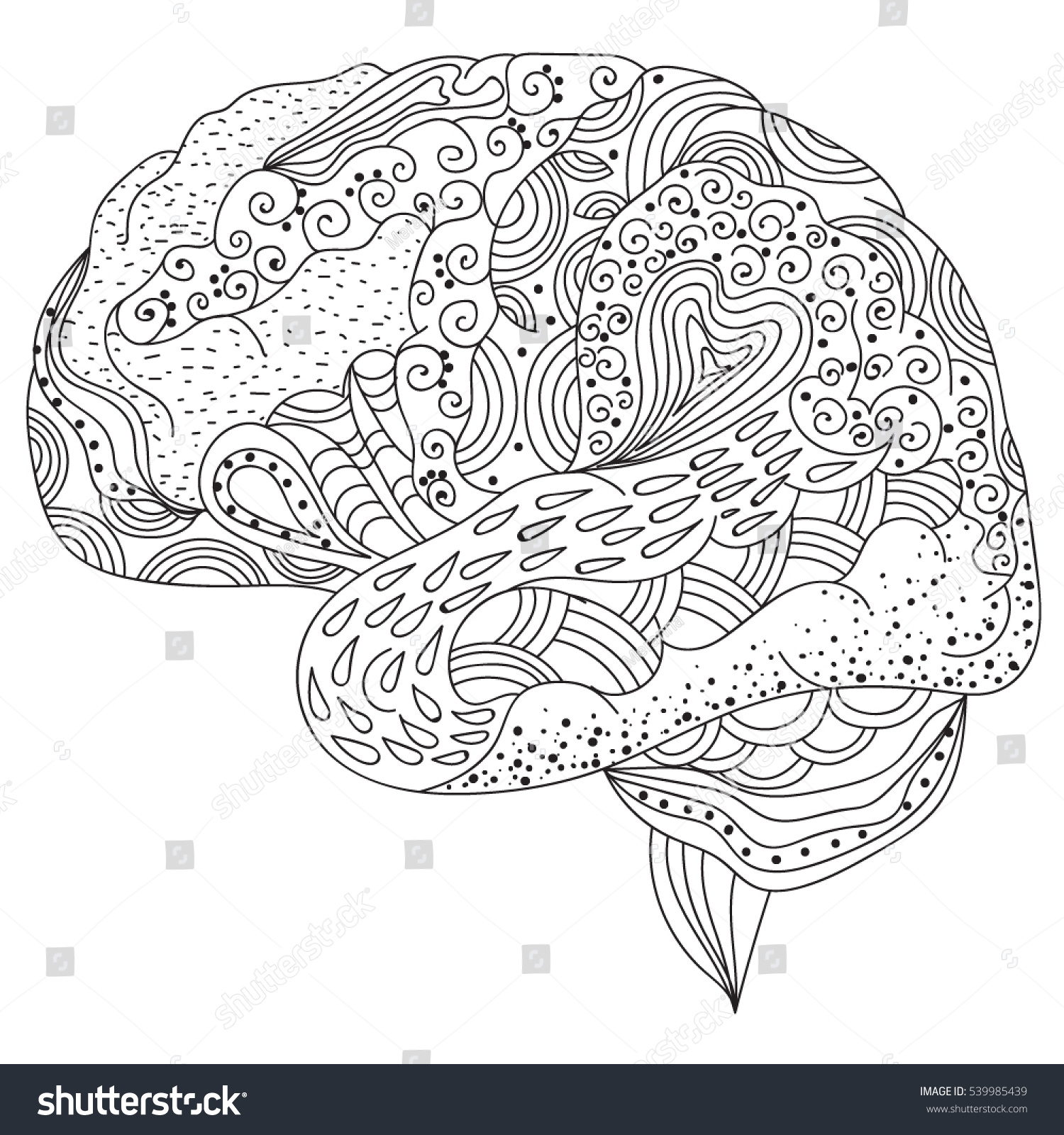 Human Brain Doodle Decorative Curves Creative Stock Vector