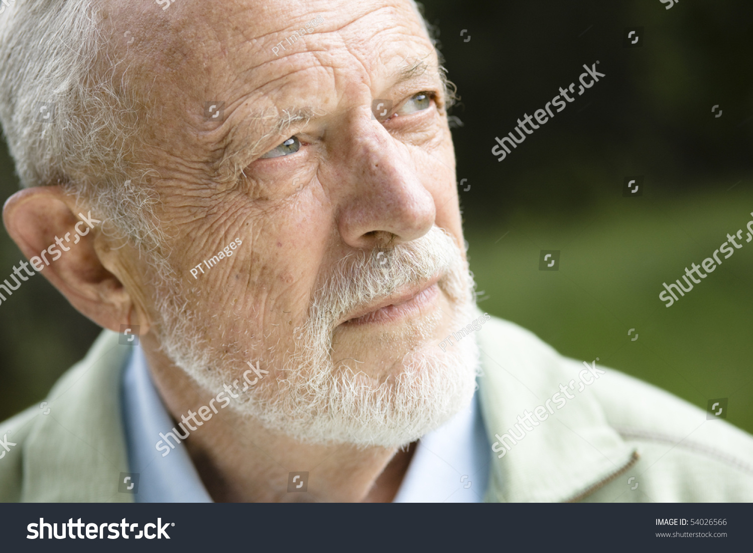 Wondrous Closeup Profile On Old Man Grey Stock Photo 54026566 Shutterstock Hairstyle Inspiration Daily Dogsangcom