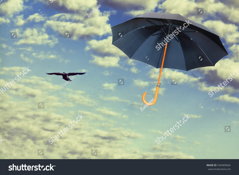 Mary Poppins Umbrella Black Umbrella Flies Dramatic Stock Photo ...