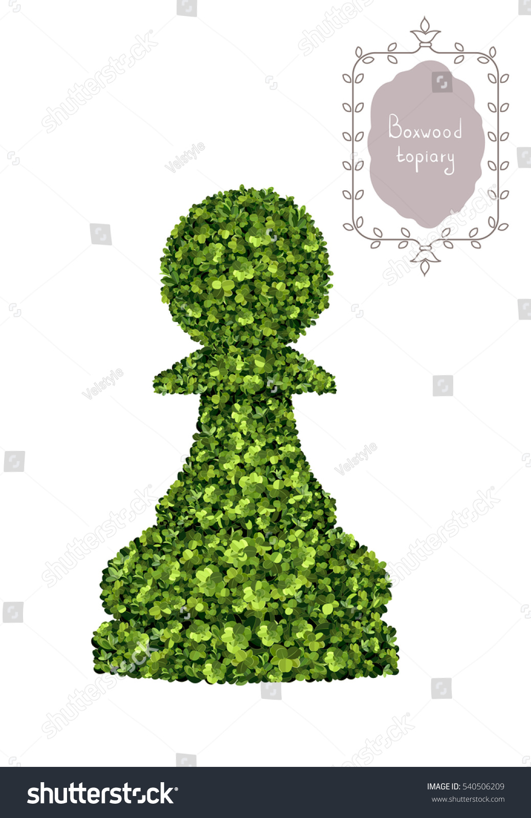 pawn chess piece boxwood topiary garden stock vector 540506209