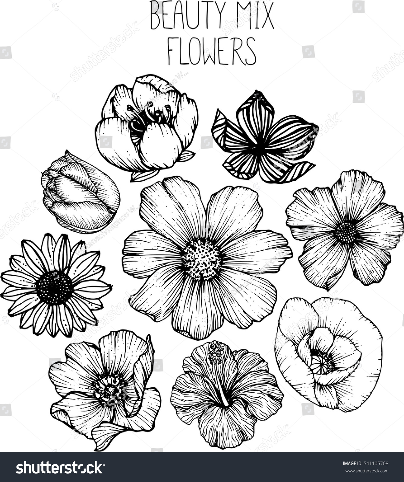 Mix Flowers Drawing Vector Illustration Clipart Stock Vector
