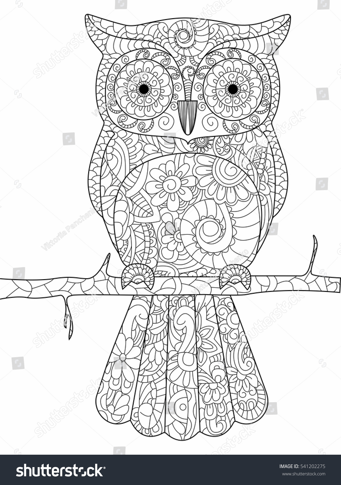 owl on branch coloring book adults stock vector 541202275
