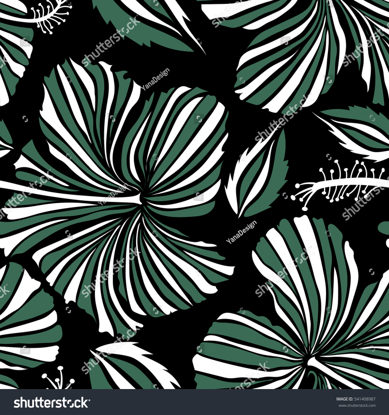 Hibiscus flowers on black background white stock illustration hibiscus flowers on a black background in white and green colors izmirmasajfo