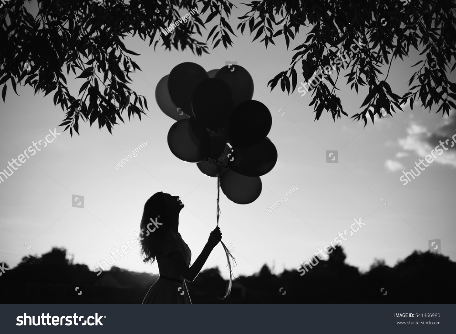 Balloons photography black and white