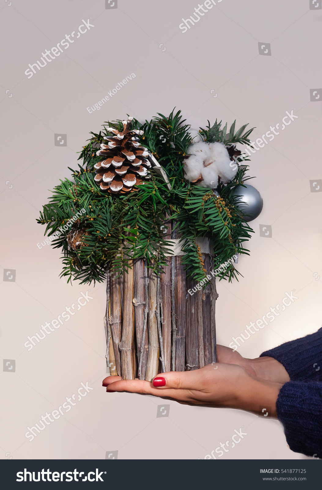 Christmas decor composition firtree branches cones stock for Fir cone christmas tree decorations