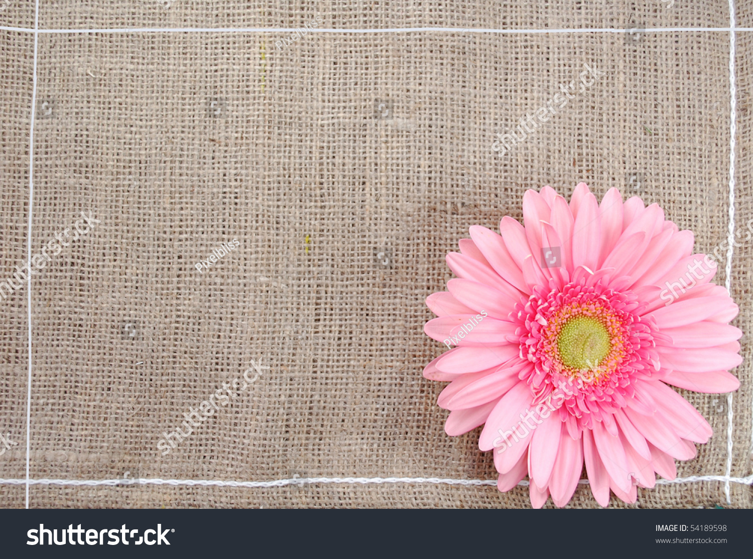 Rustic Flower Background Stock Photo Image Royalty Free 54189598