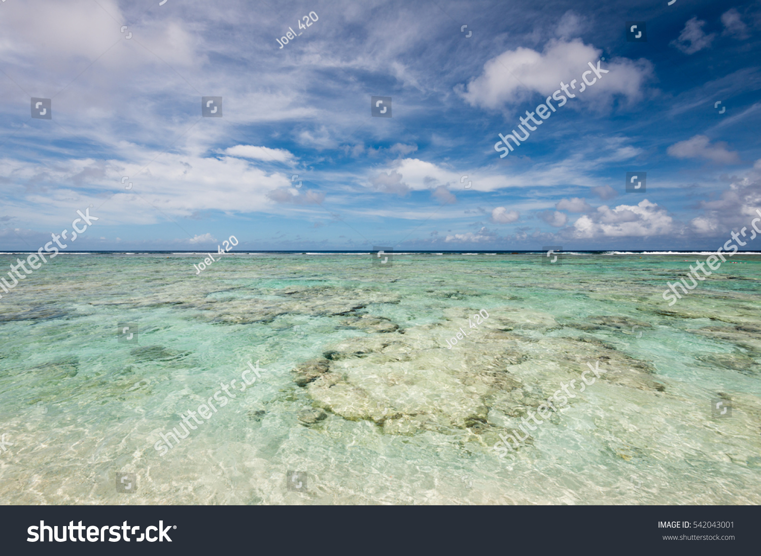Coco Palm Garden Beach Guam Usa Stock Photo (Royalty Free) 542043001 ...