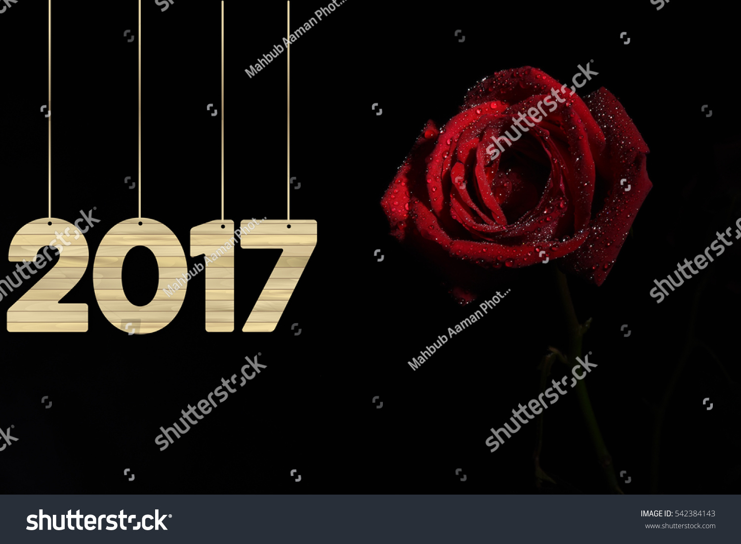 red rose with happy new year 2017 542384143