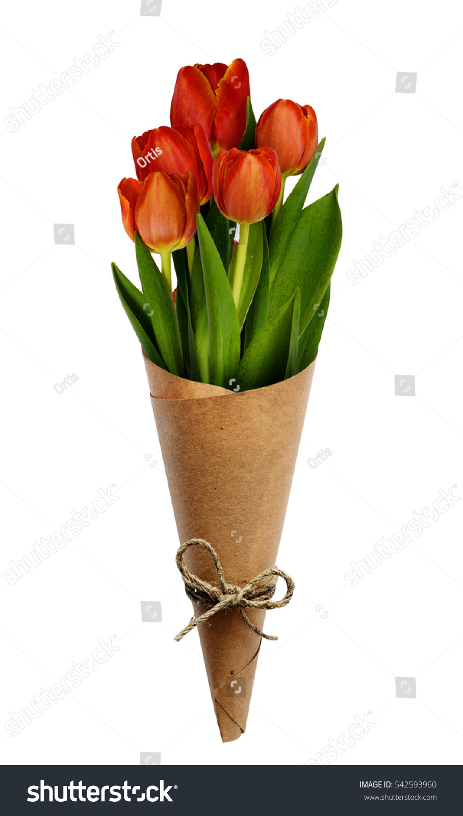Bouquet Red Tulip Flowers Craft Paper Stock Photo Edit Now