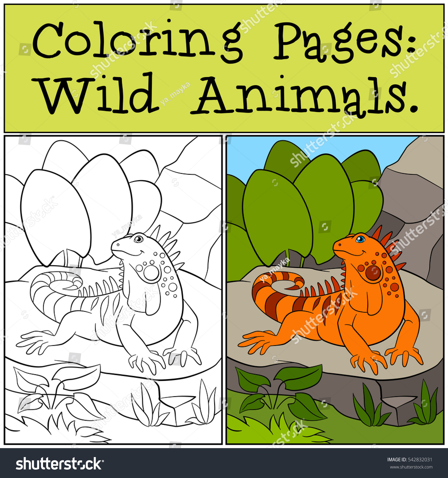 Coloring Pages Wild Animals Cute Orange Stock Vector HD (Royalty ...