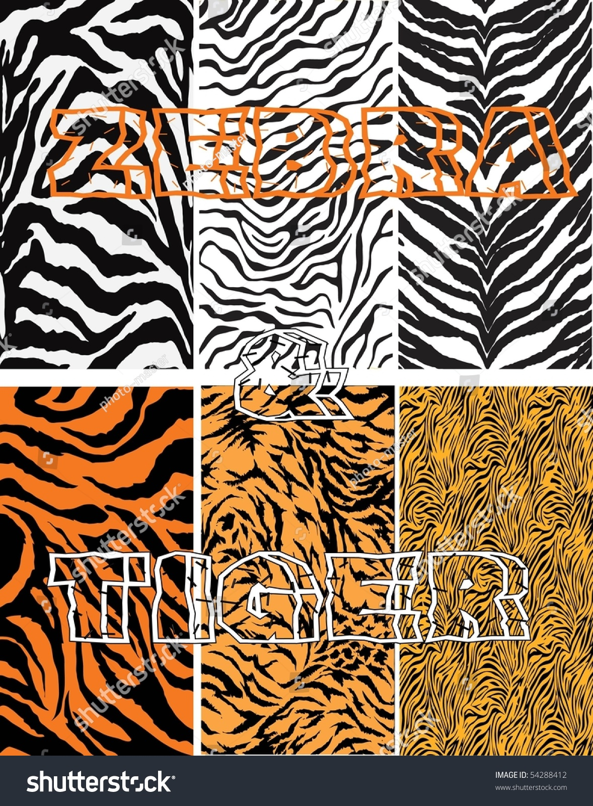 zebra tiger vector stock vector 54288412 shutterstock