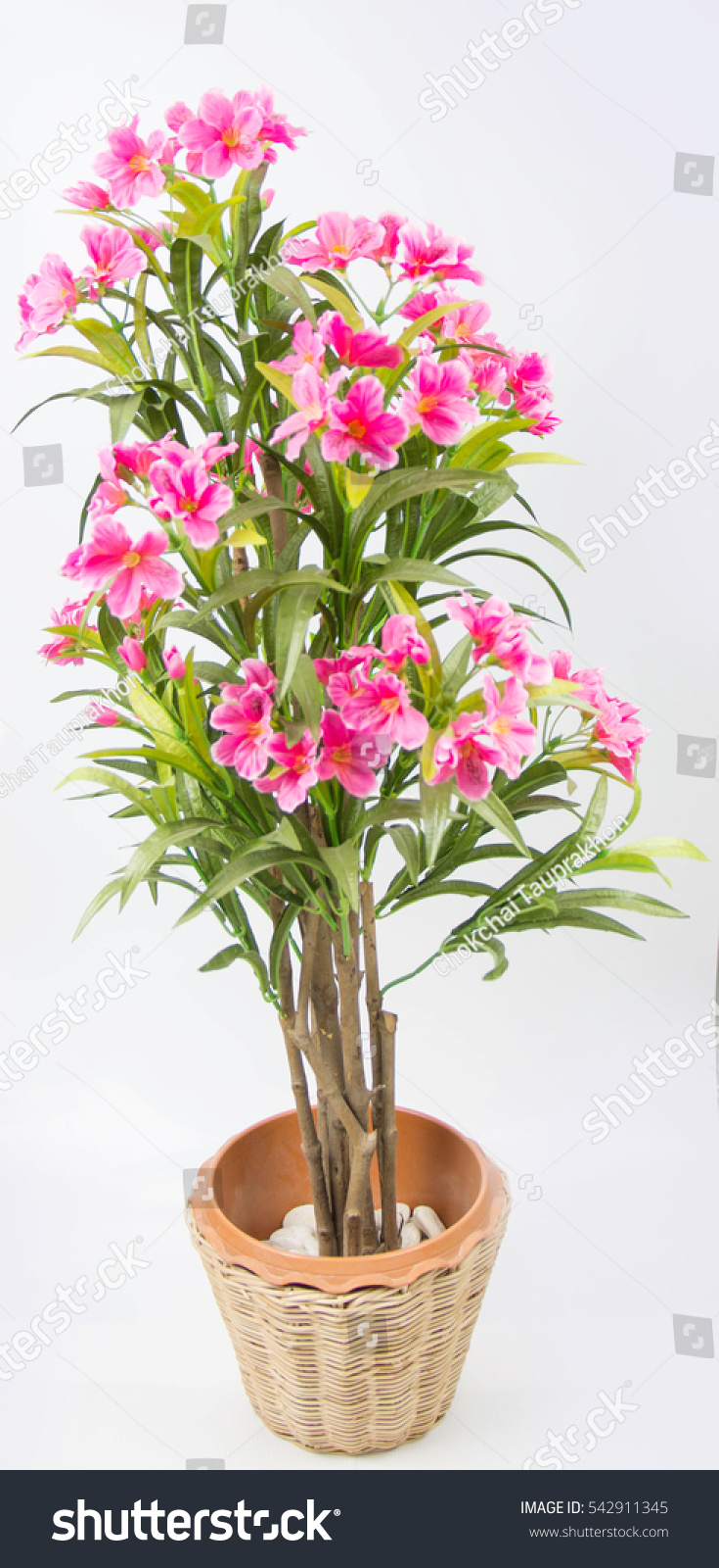 Fake Pink Flowers On White Background Stock Photo Edit Now