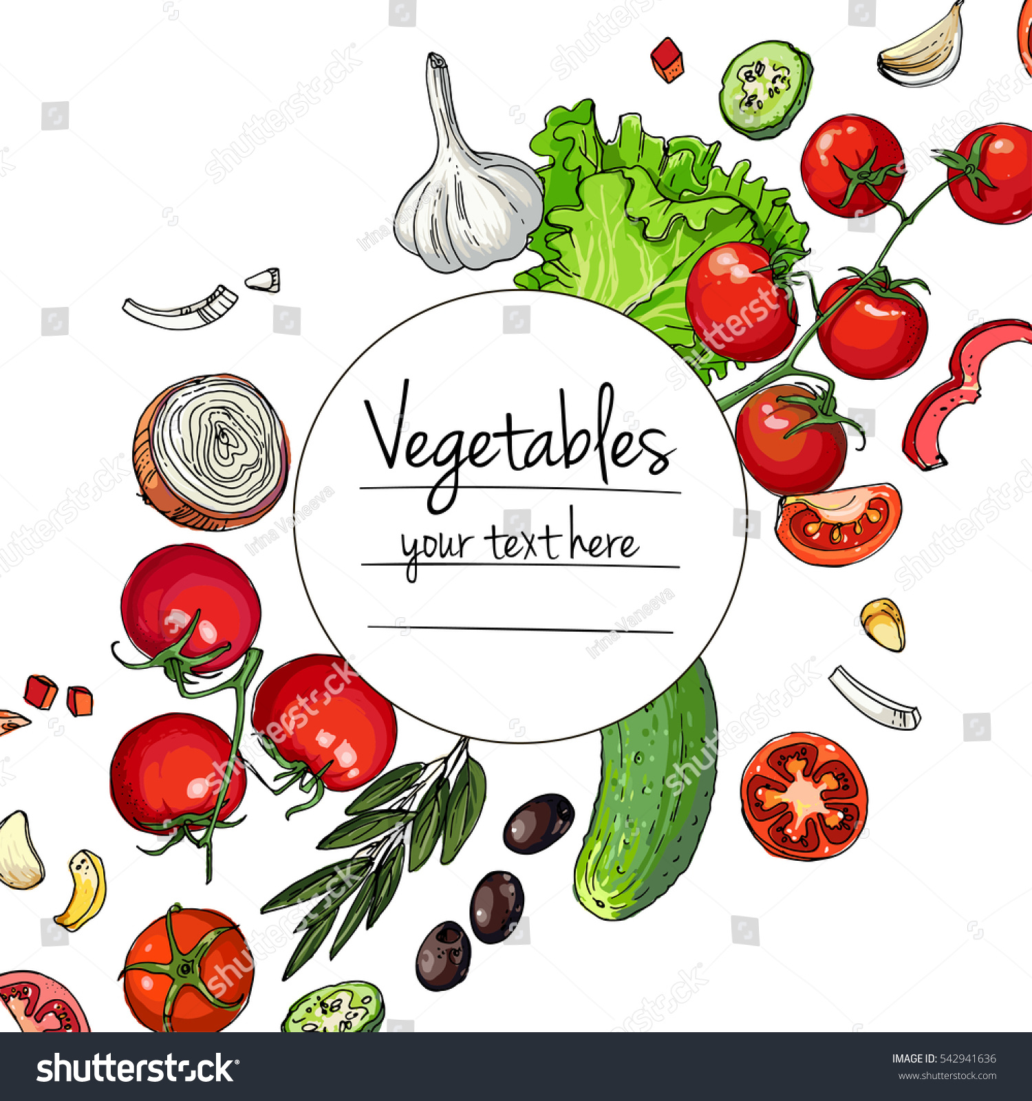 Vegetables fresh food lettuce tomatoes cucumber stock vector vegetables fresh food lettuce tomatoes cucumber olives garlic line drawn biocorpaavc Image collections