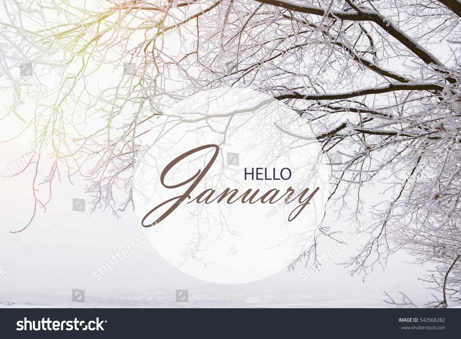 Looks - January Hello wallpaper pictures video