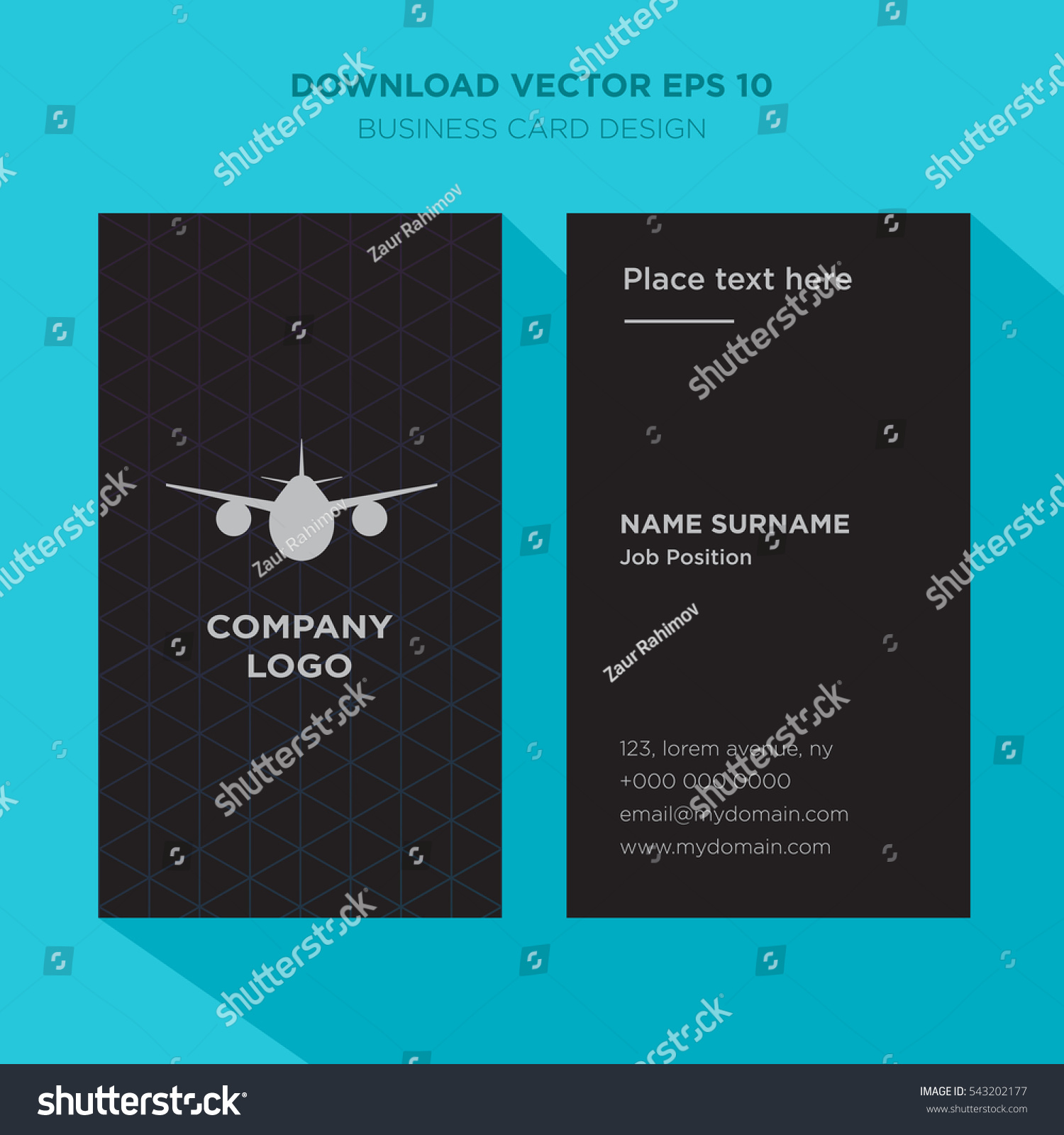 Template Elegant Business Card Airline Services Stock Vector ...